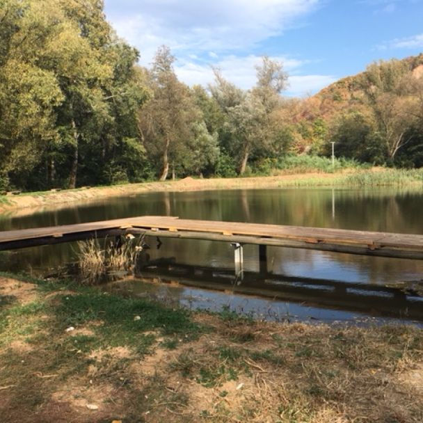 Jeseň na rybníku