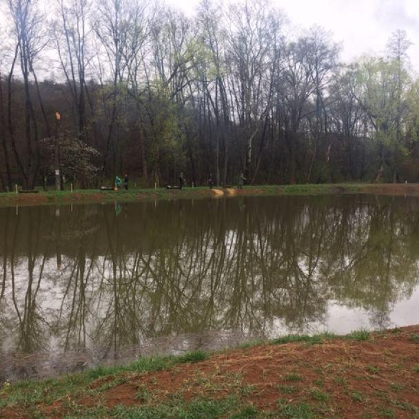Prebúdzajúci rybník po zime